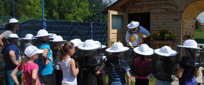 Mladi čebelarji